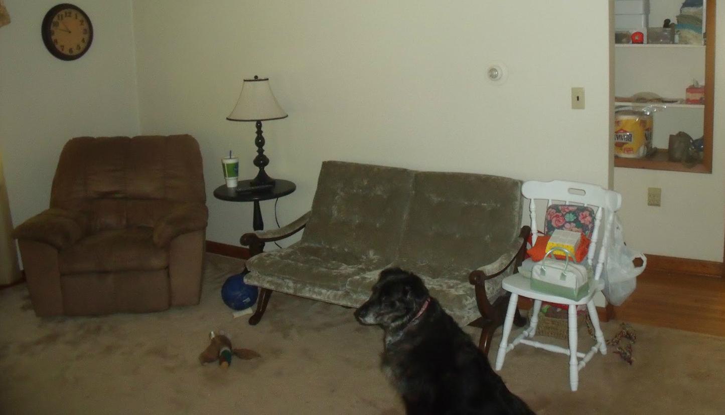 chaise sofa lounge perth teak wood set price in chennai sofas  make over