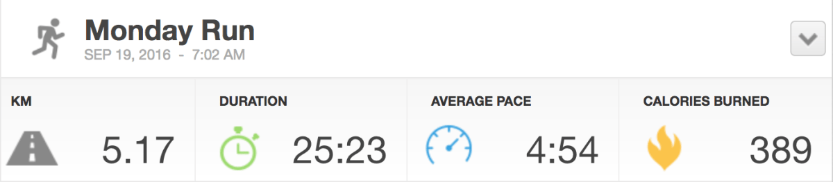 wwwp5k2016-run-stats