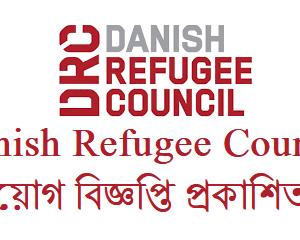 danish refugee council job circular