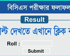 bcs exam result