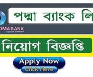 Padma Bank Ltd Job Circular