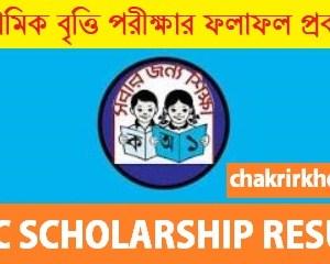 psc scholarship result