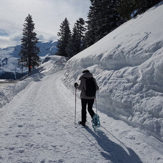 snowshoeing flaine 2