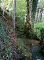 ruisseau en bordure du terrain. Stream running along side property.