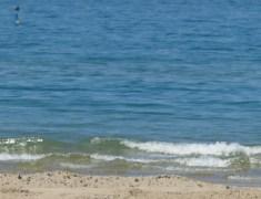 La crisi non ferma la voglia di vacanze degli italiani