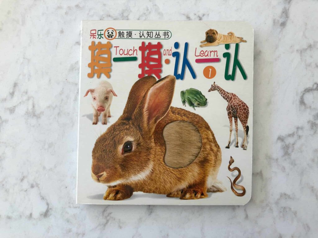 Touch and Feel Chinese Baby Books