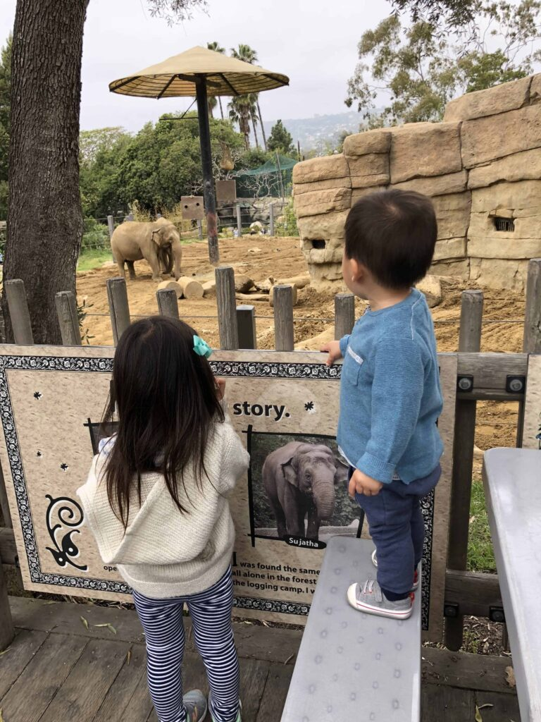 Trilingual schedule - outing at the zoo