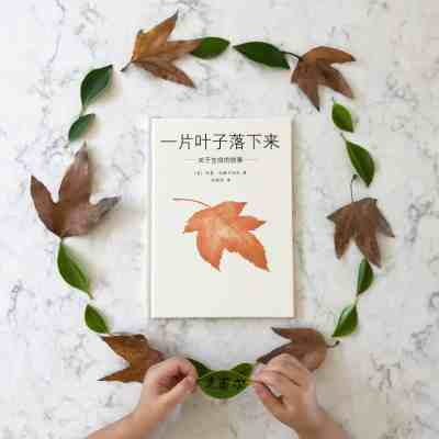 The Fall of Freddie the Leaf (一片叶子落下来): Book Review & Activity