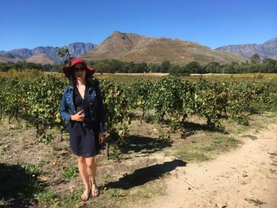 Vineyards in Franschhoek