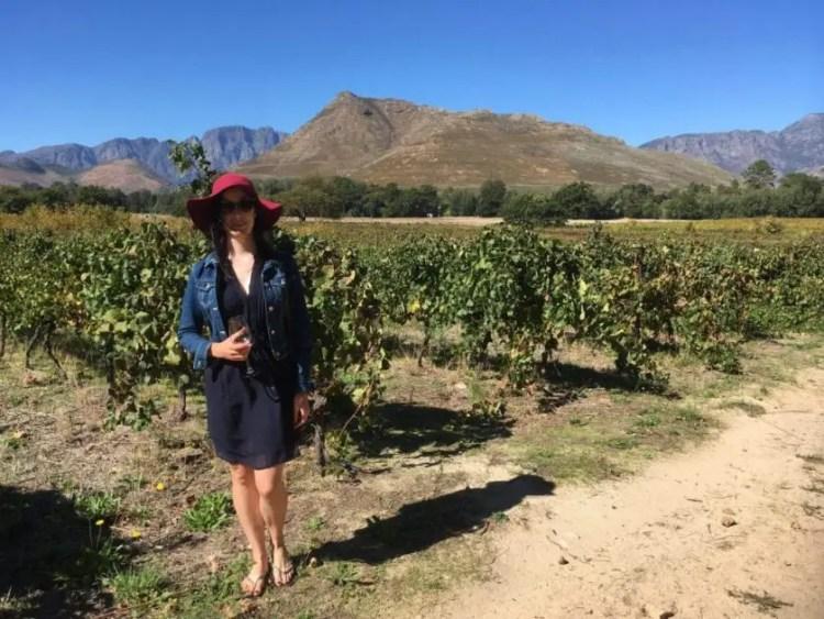 Wine tour beginning