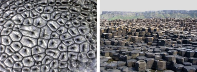 Left: An experiment with oil heated from below. Hexagonal Rayleigh-Bénard cells have formed. Right: The Giant's Causeway in Northern Ireland.