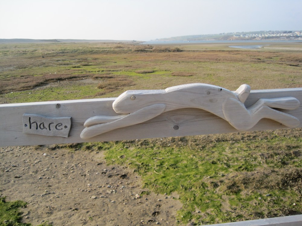 Chesil Hare (2/6)