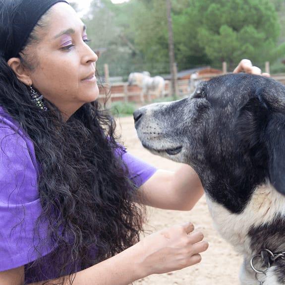 adiestramiento canino amtella del valles