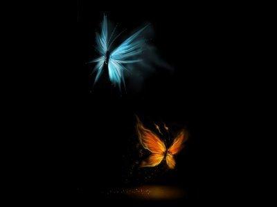 Resultado de imagen de mariposas en la oscuridad