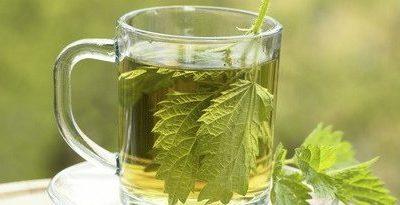 Plantas Medicinales, la Ortiga