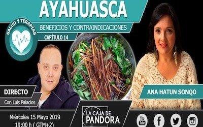 Ayahuasca: beneficios y contraindicaciones