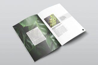 botanical-magazine-mockup-3