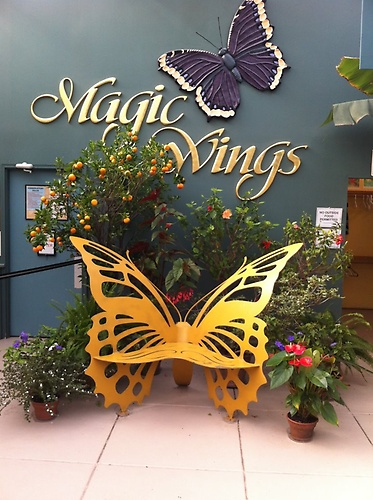 Magic Wings Butterfly Conservatory  Gardens  Museums  Gift Stores  EntertainmentAttractions