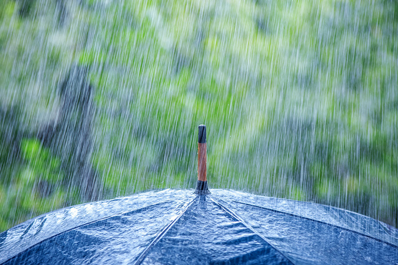 Do Small Businesses Really Need Umbrella Insurance?