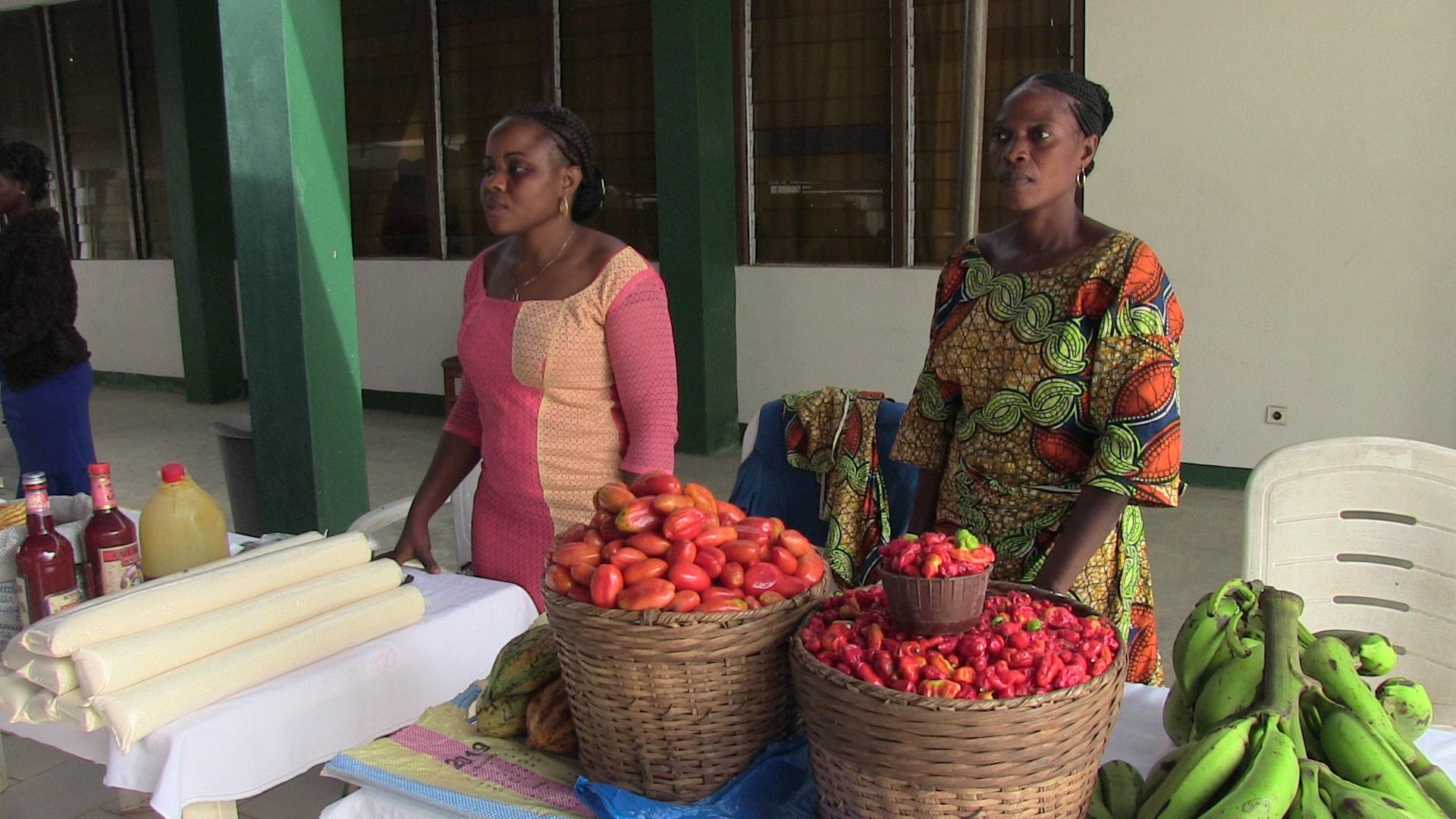 Read more about the article CELEBRATION DE LA FEMME RURALE AGRICULTRICE DU BENIN
