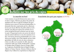 Read more about the article Bulletin sur les prix du cajou N° 007 du 15 avril 2021
