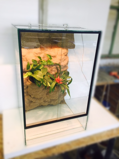 Terárium 50x50x80 cm pro chamelona