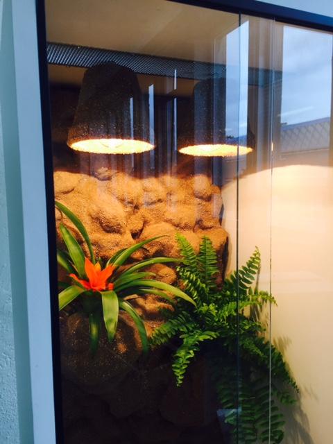 Terárium bíle lamino 50x50x100 cm pro chameleona