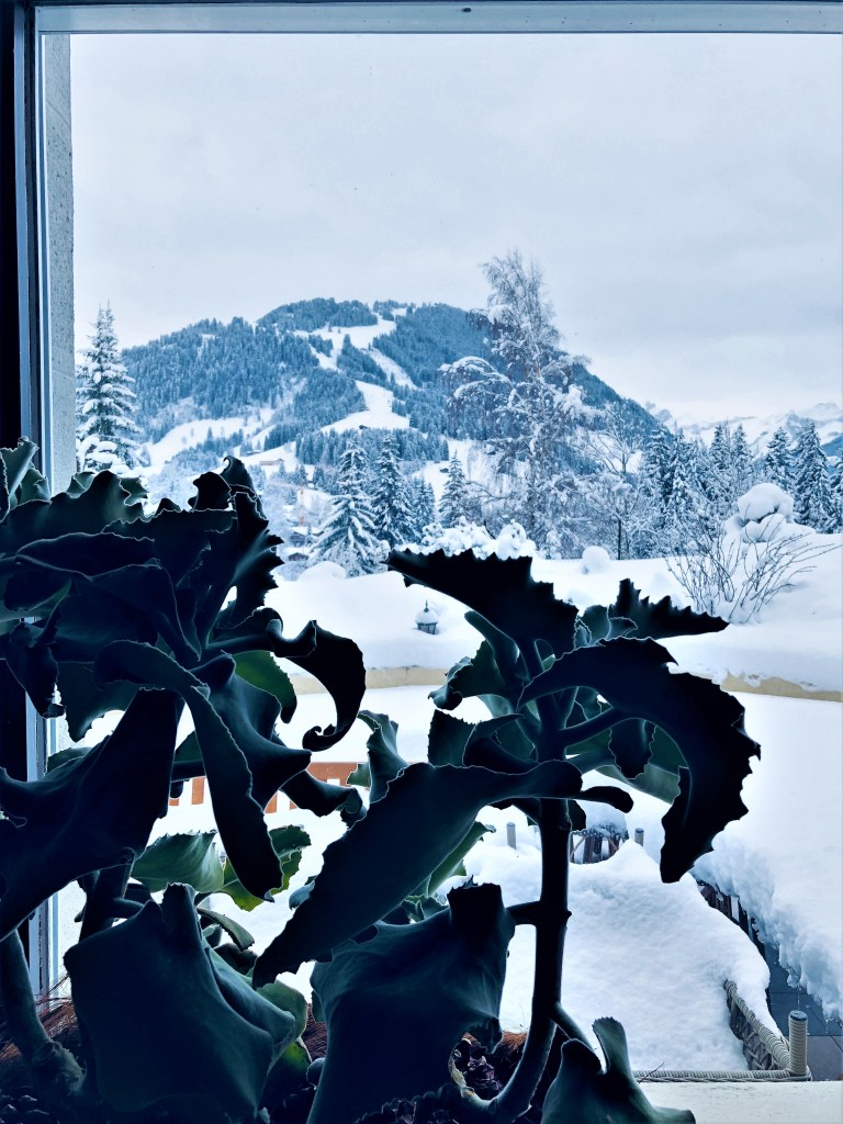 Eileen Callahan in Gstaad Switzerland at The Palace with Champagne Travels