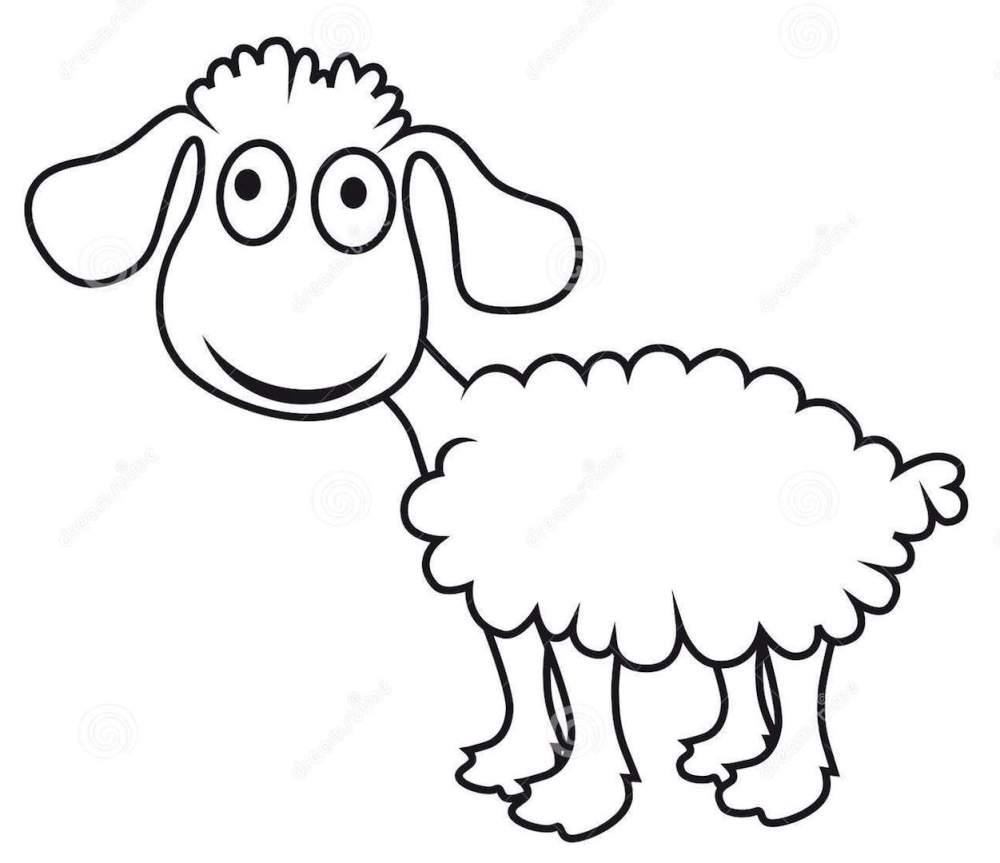 moutons-de-dessin-anim-agneau-de-vecteur-20728684