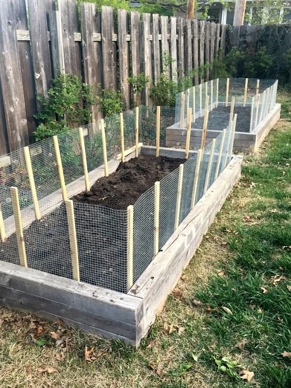 diy garden fence ideas - protect