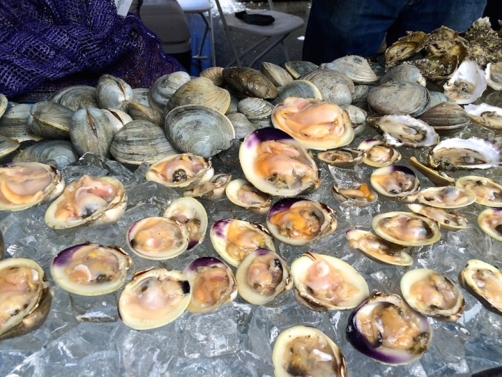Boston Seafood Festival