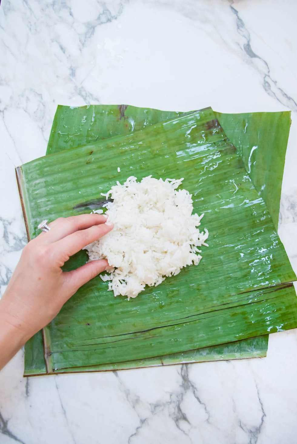 banana leaves paper Here you will find listings of paper banana leaf manufacturers, paper banana leaves suppliers and exporters these paper banana leaf manufacturing companies are delivering top quality products to the clients on time.