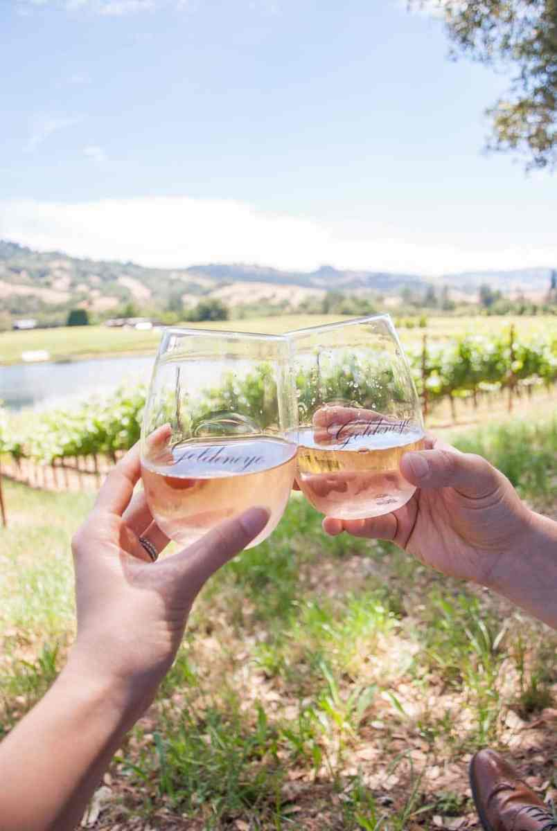 Summer Picnic in California Wine Country