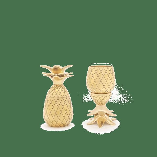 pineapple shot glass set