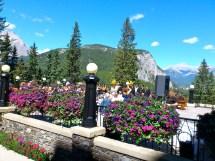 Banff Springs Fairmont Terrace Outside Wedding