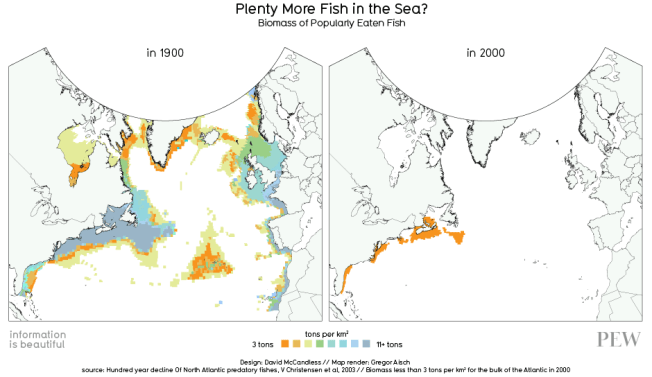 Decline in biomass of popular fish 1900-2000 Source: Information is Beautiful/The Guardian