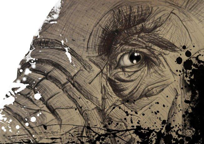 Elephant Eye Artist: Kristan Benson