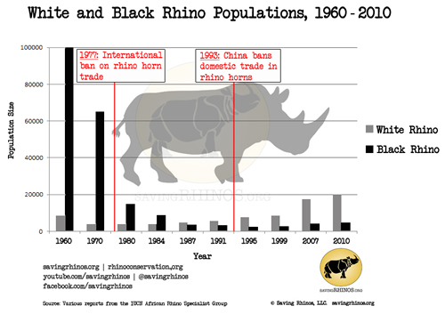 Rhino numbers Source: Savingrhinos.org