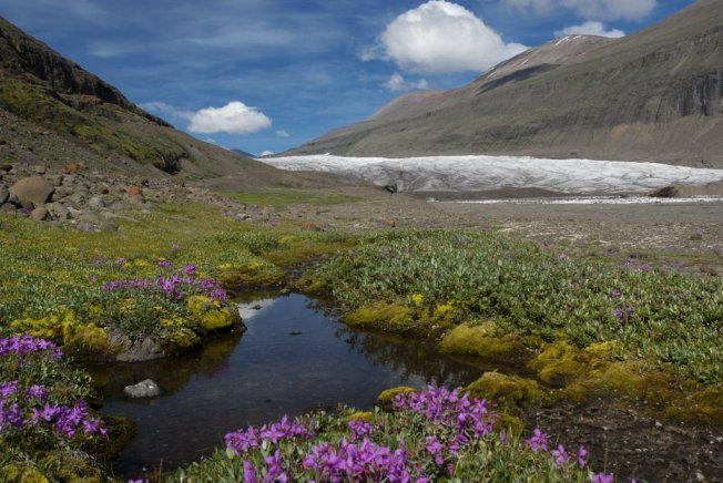 Kuannersuit Glacier, Disko, Greenland Photo: Panoramio
