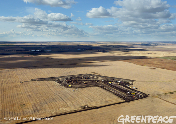 Jensen wheat field, Tesoro oil spill, North Dakota Photo/Credit: Neil Lauron / Greenpeace