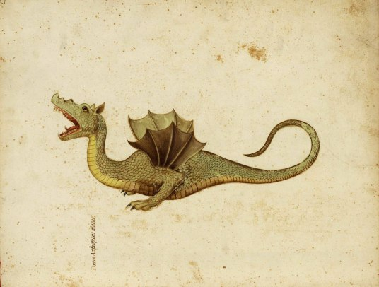 Dragon, Ulisse Aldrovandi (1522-1605) Source: Spamula