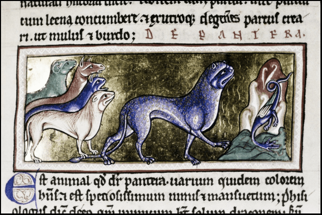 Ashmole Bestiary (early 13th century) Source: Oxford Bodley Library