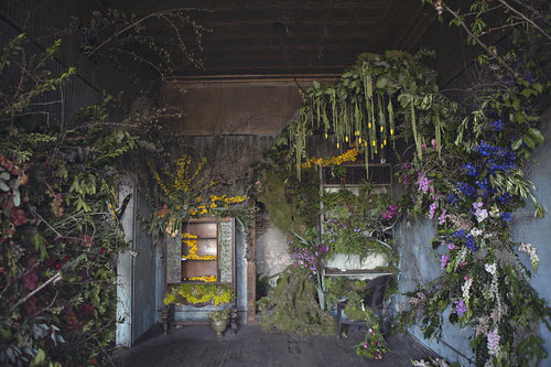 The FlowerHouse is a collective effort to reclaim what's been abandoned, condemned and neglected.