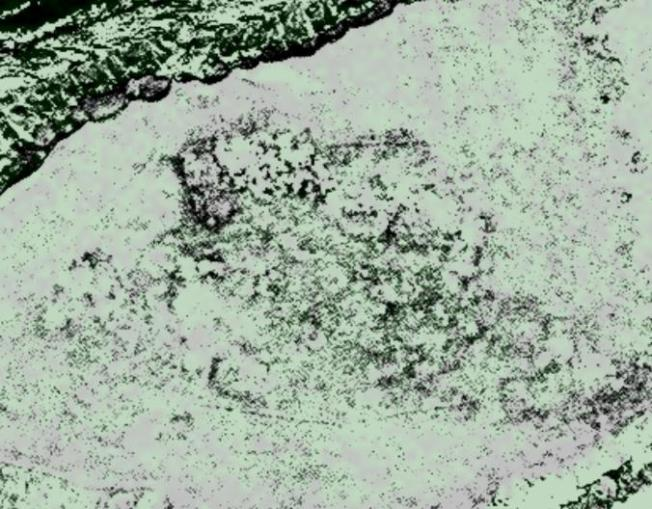 A satellite image of Point Rosee used by archaeologist Sarah Parcak in her search for Viking settlements. Dark straight lines indicate the remains of possible structures. Caption/Image: National Geographic/ Digitalglobe