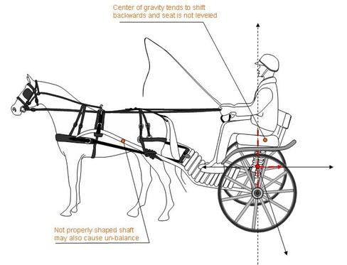 horse carriages, Animal Sports International, Inc Atlanta