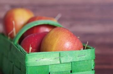 Tastes Like Apple Pie Apple Squares!