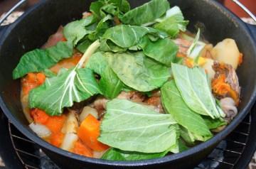 Perfect Chicken Stew