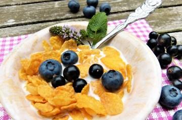 Low-Carb Low-Calorie Macaroni Salad