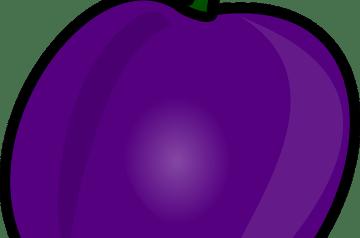 Plum and Prune Smoothie