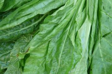 Spinach-Stuffed Chicken Spirals